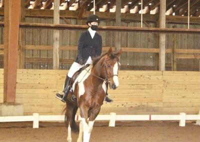 COVID provides opportunity for some local equestrians