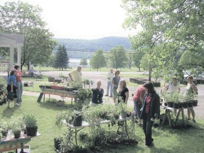 Master Gardeners to hold annual plant sale