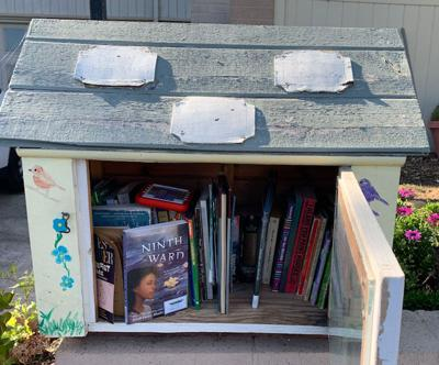 Little Free Library Selection ...