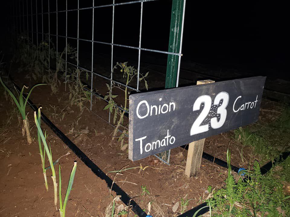 Supplying a food desert | News | corsicanadailysun com