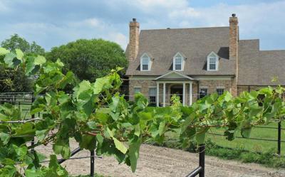 2-vineyard-vines-house.jpg