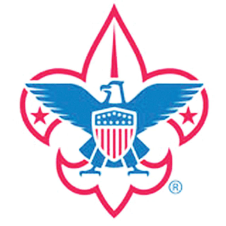 11-13 United Way-Scouts.jpg