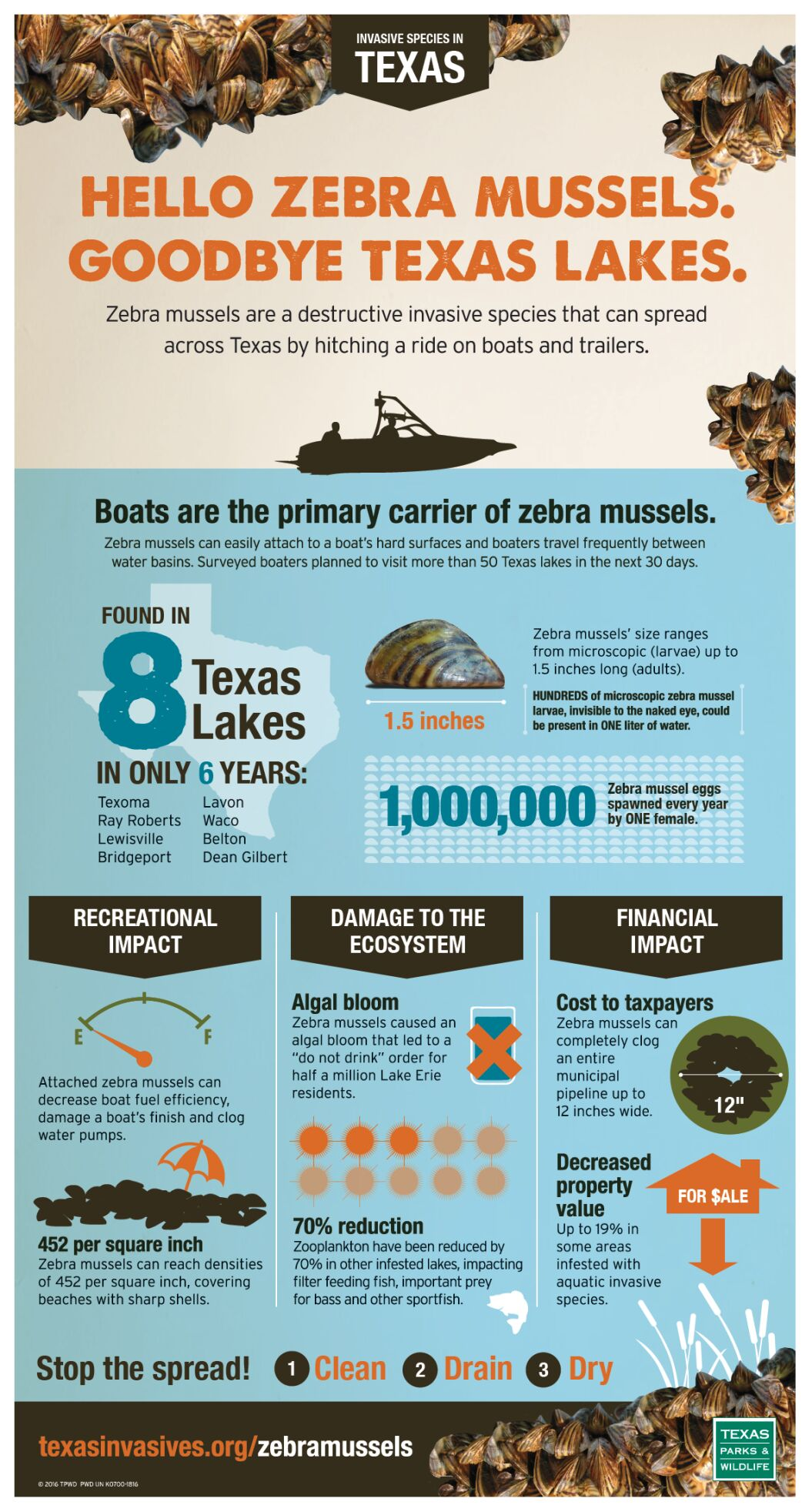 10-24-20 TPWD Zebra Mussels infograph.png