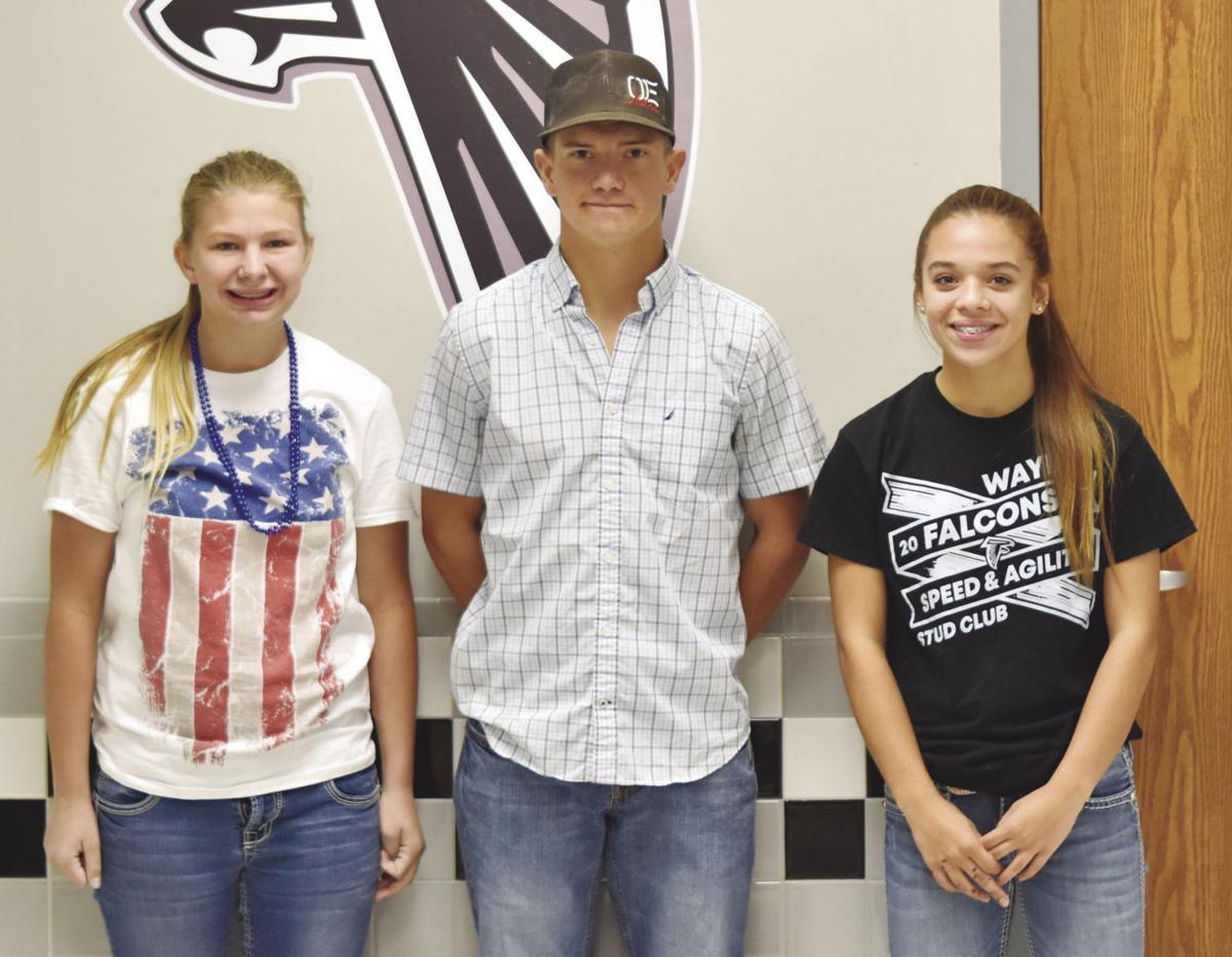 Wayne FFA Chapter fares well at livestock judging contest