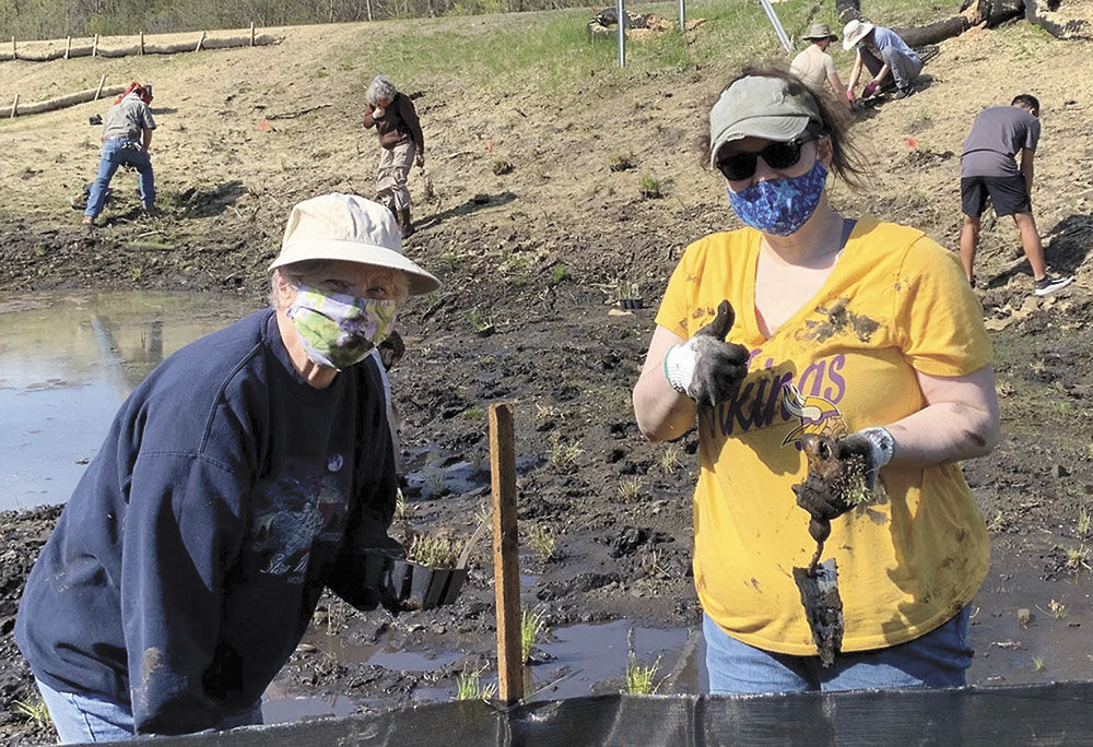 May Day wetland restoration project kicks of summer of planting in Marine