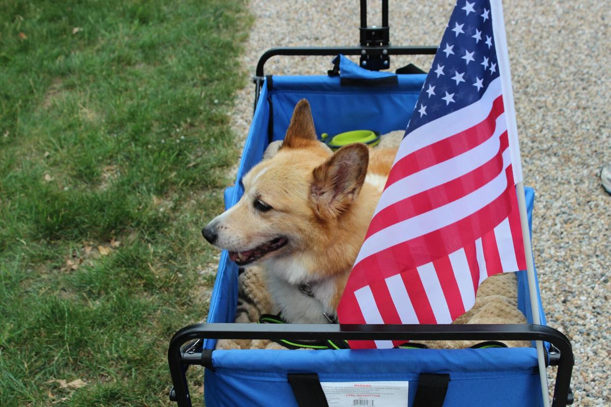 Litchfield Historical Society holding annual pet parade