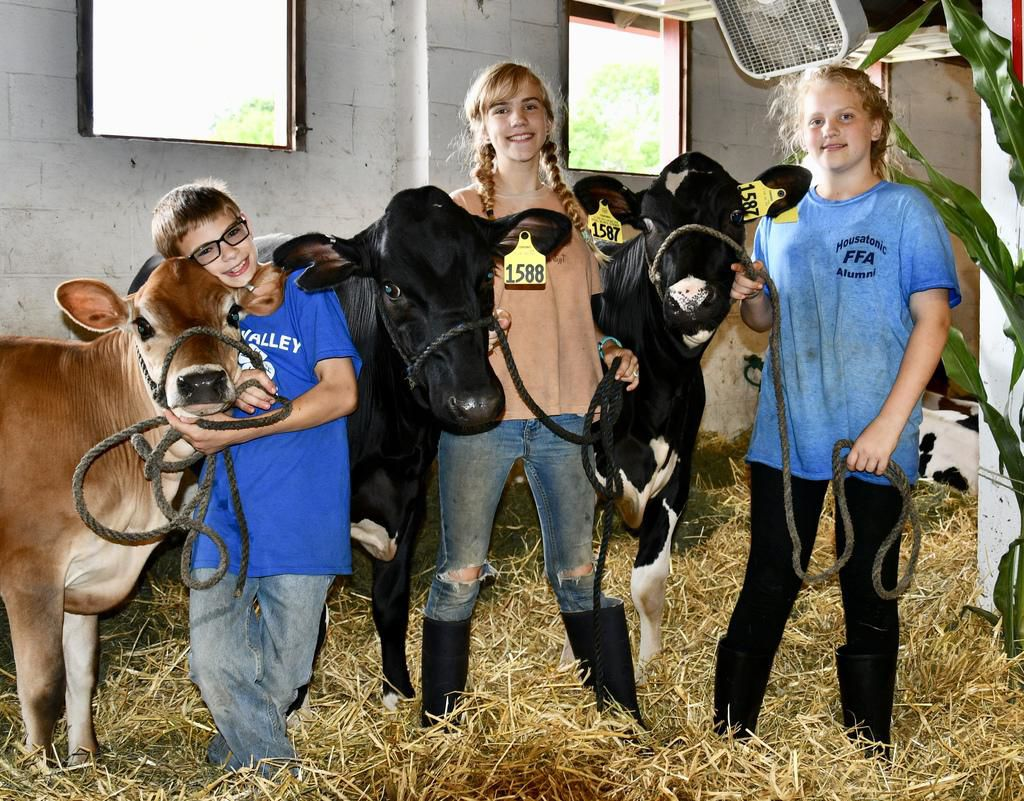 Check out photos from the 2019 Litchfield County 4H fair
