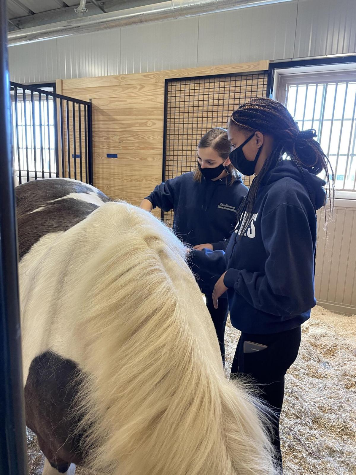 'High school with an enhancement': Shepaug Valley's regional agriscience program triples in size