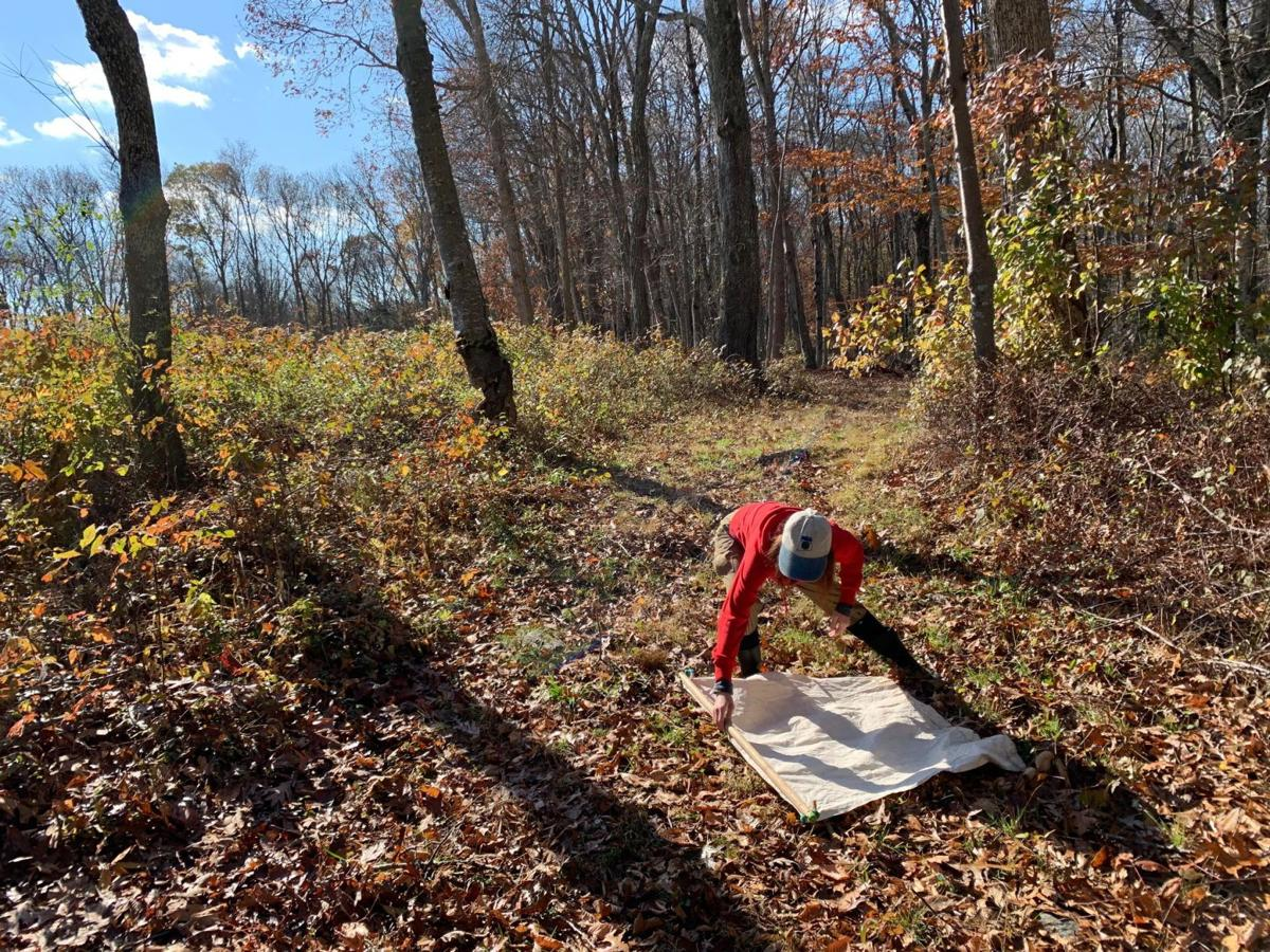 Tracking the terrain harboring disease-carrying ticks in CT
