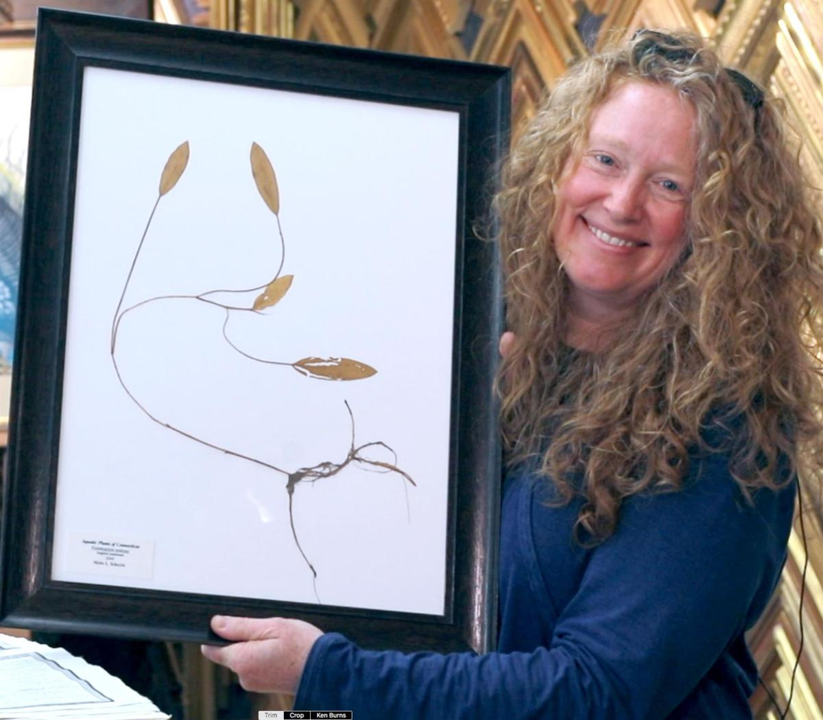 Aquatic-themed art by 2 artists on tap at Woodbury Library