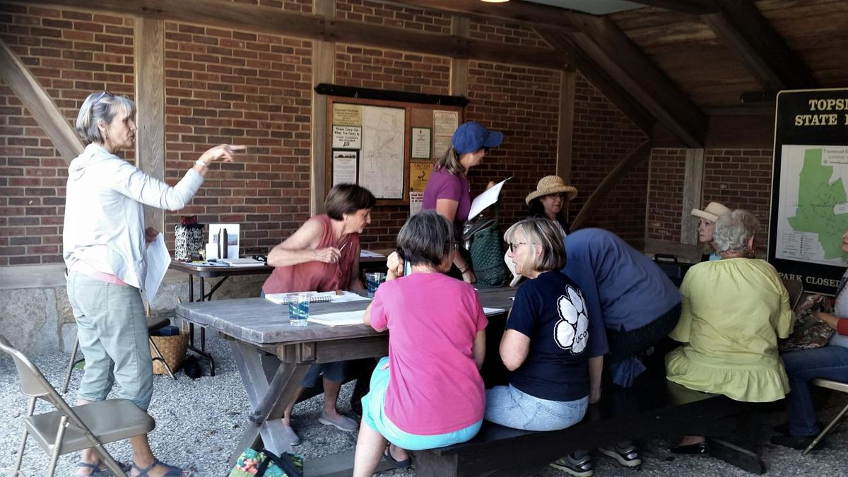 Creatives embrace nature at Topsmead event in Litchfield