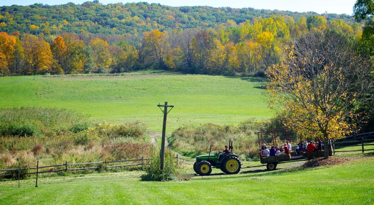 Warm, dry September forecast; could delay fall foliage