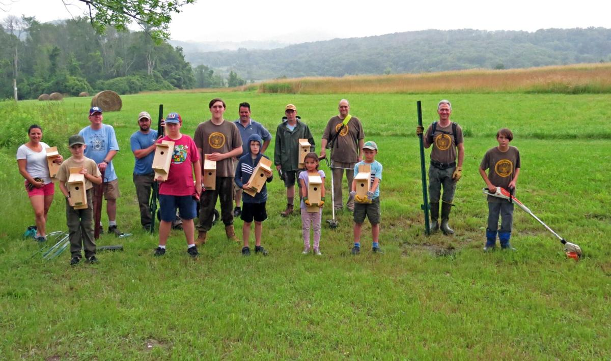 Boy Scout installs bluebird houses for Eagle Scout project