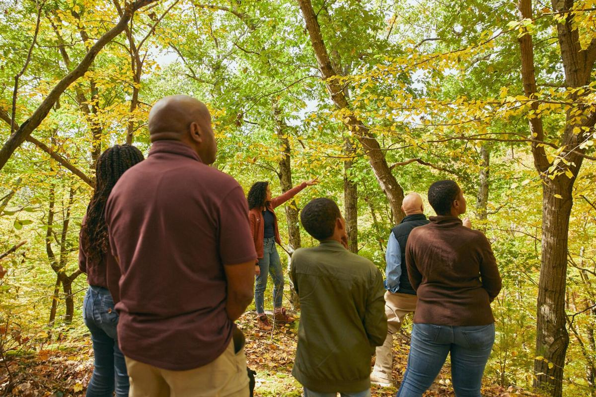 Better Place Forests, a natural burial option, launches in Falls Village
