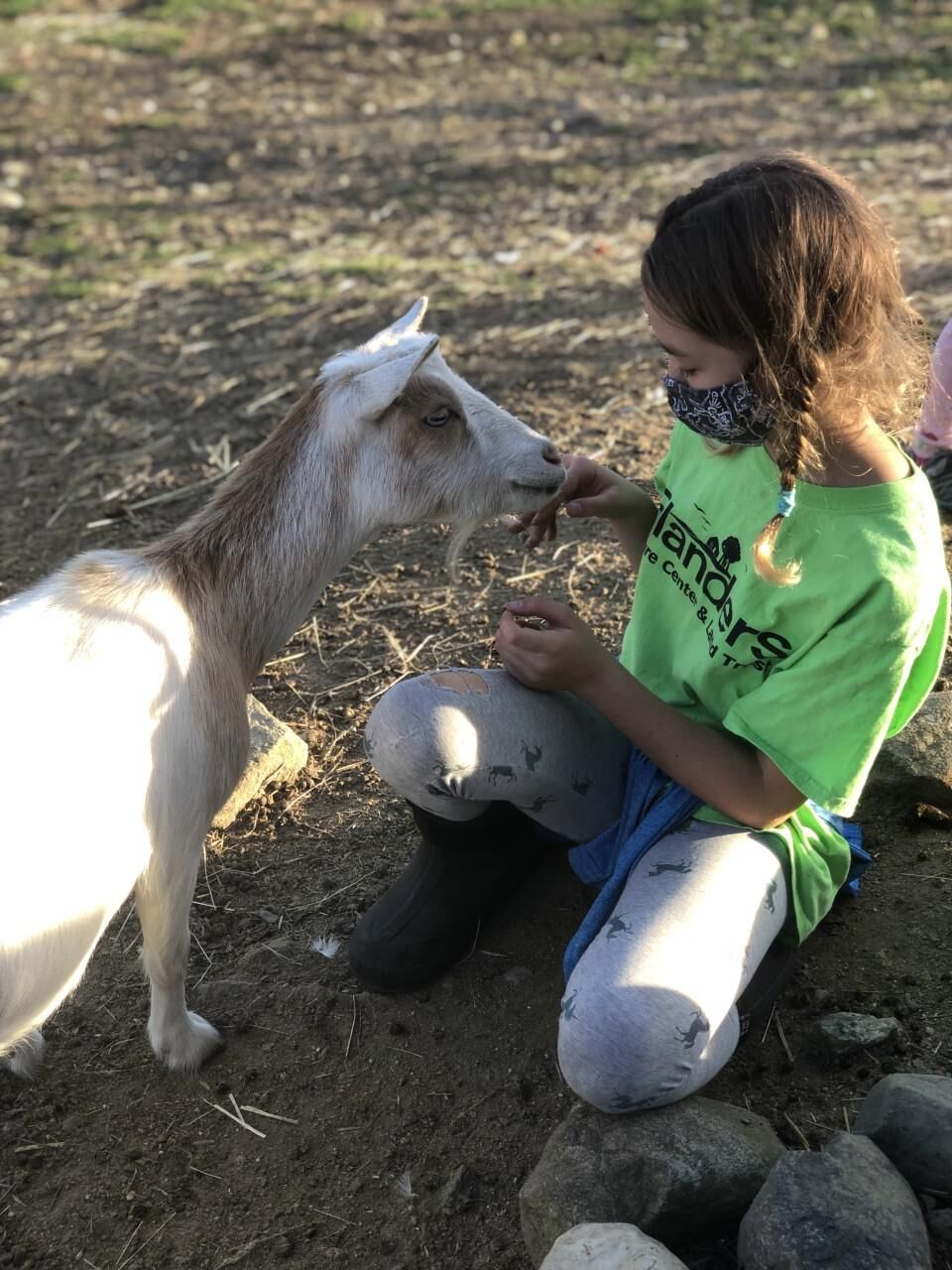 Young people learn life skills in new Woodbury 4H club