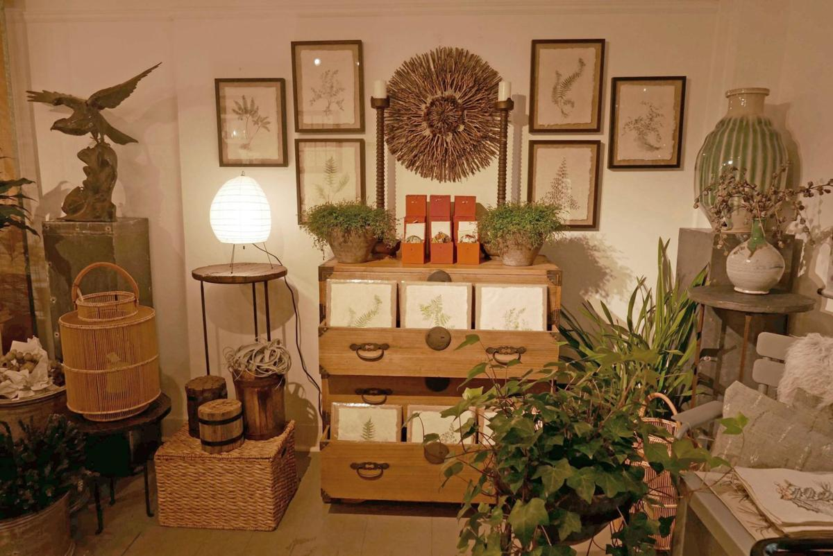 Stephanie Wargo's botanical designs are in a class by themselves