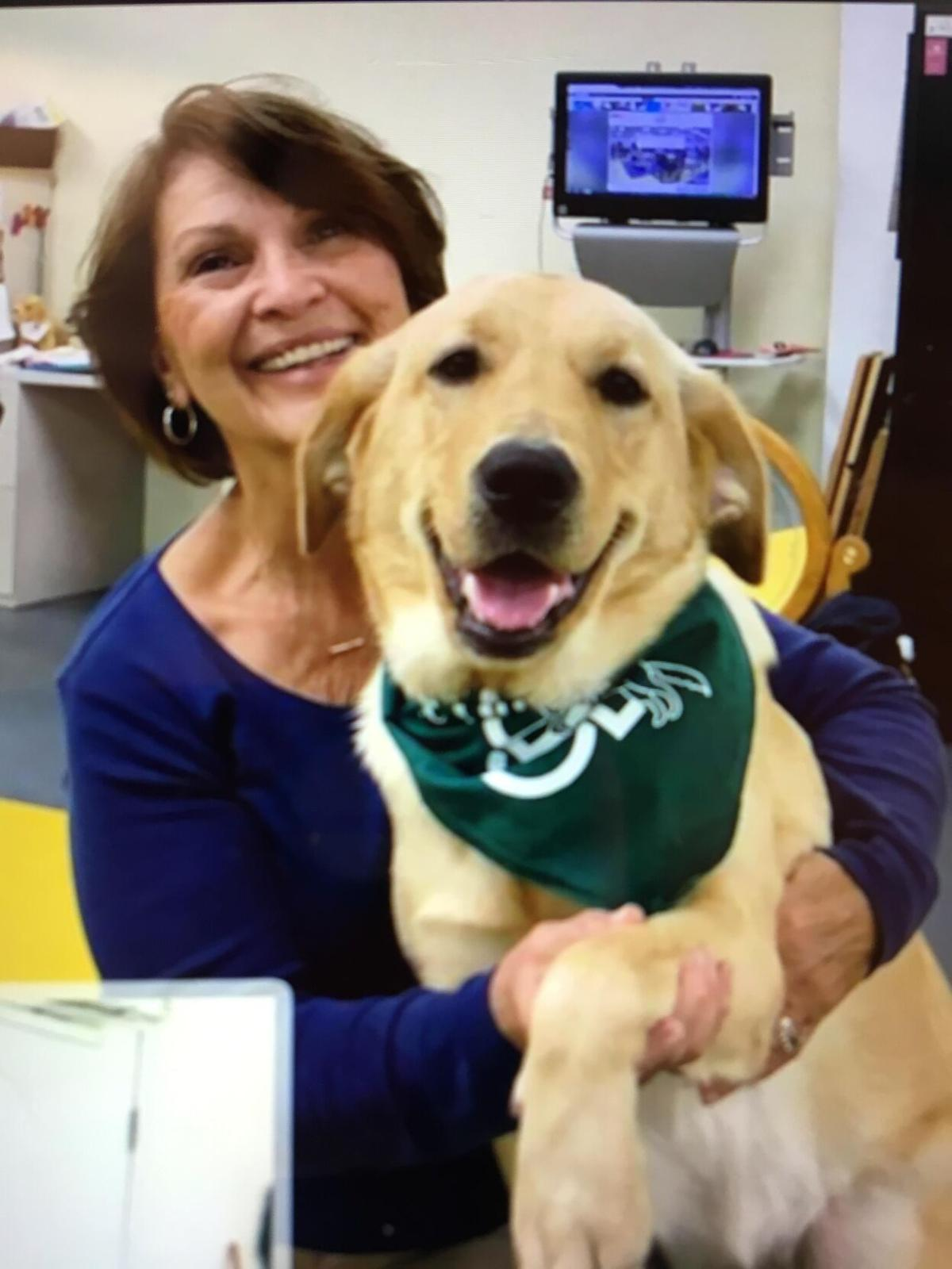 ECAD thanks Home Handlers for taking dogs into their homes