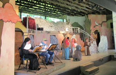 Jo Ann Jaacks: Fiddler at the concession stand