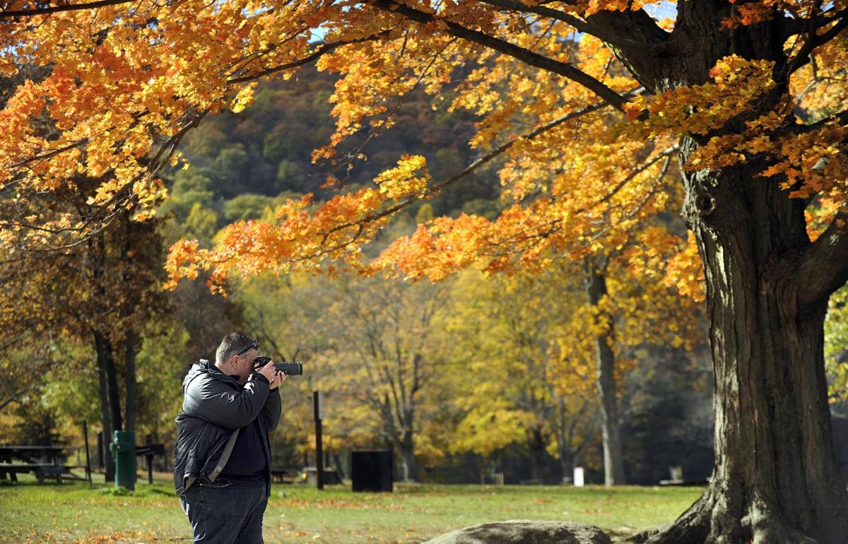 What to expect of the fall foliage season this year