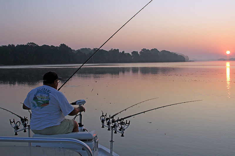 New Technology Changes Anglers' Perspectives on Fish Activity