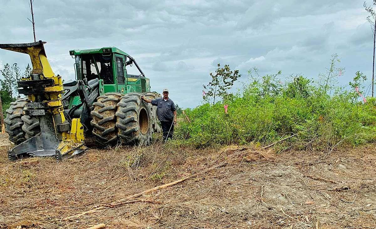 Logging Crew Protects Turkey Nest, Observes Hatch