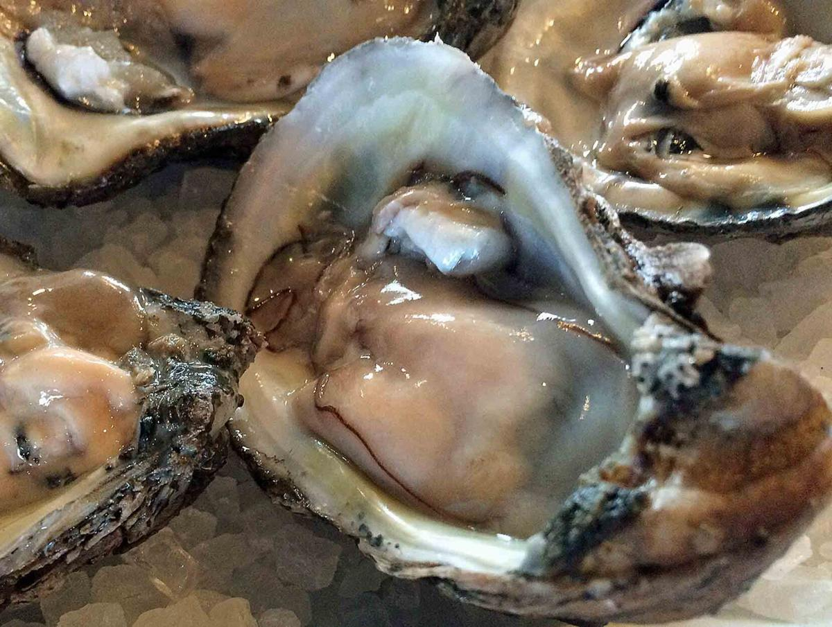 Alabama 2020 Oyster Harvest Doubles Previous Year's Totals