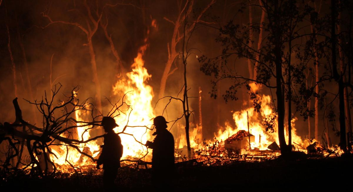 Tree house fire1.JPG
