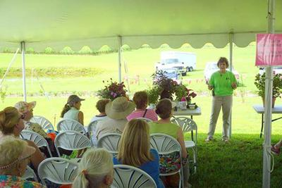 Find answers to planting queries on Aug  27 | Lifestyles