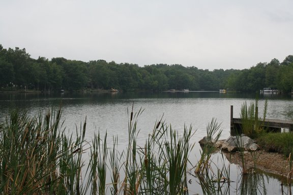 Meeting Airs Lake Residents Concerns Over Weeds Color Glade Sun Crossville