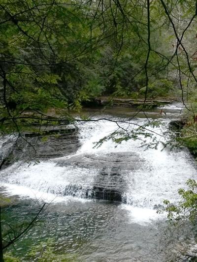 Hiking Group Trekking To Duskin Creek Glade Sun Crossville
