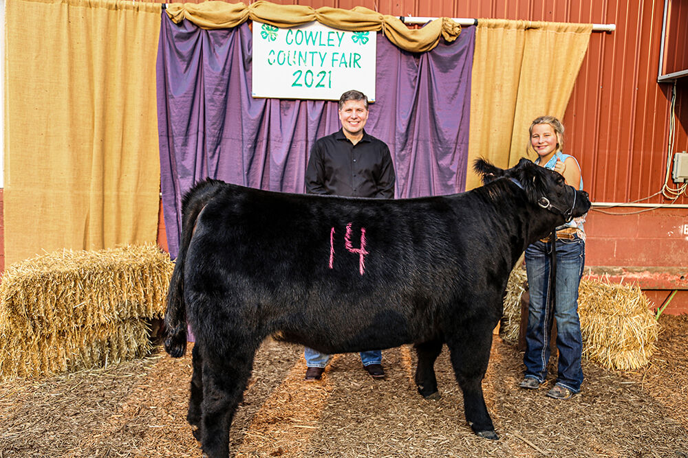 Cowley College continues tradition of buying steer with plans to donate meat