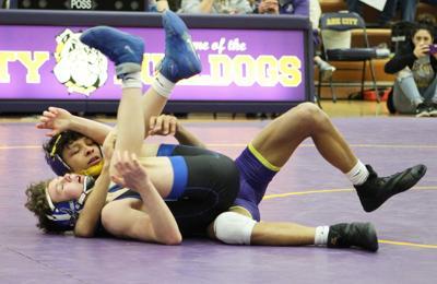 No. 5 Bulldogs fall to No. 1 Goddard in AV-CTL D-II finale