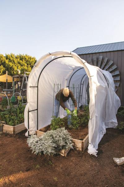 Keep gardening after first frost in the fall