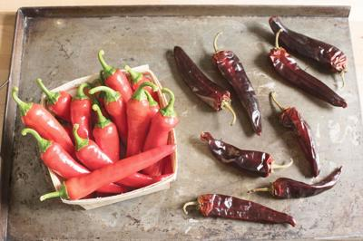 Debunking hot peppers myths from your garden