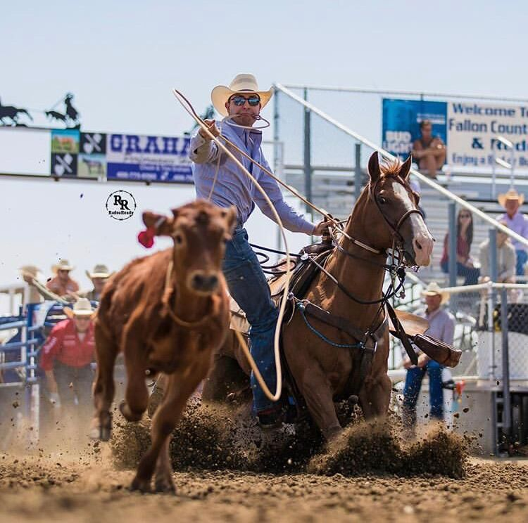 Dexter native named tie-down roping Rookie of the Year