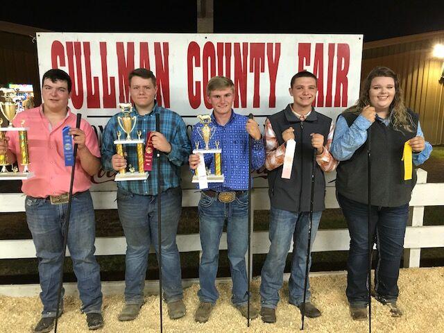 Junior Beef show, 16 and older showmanship