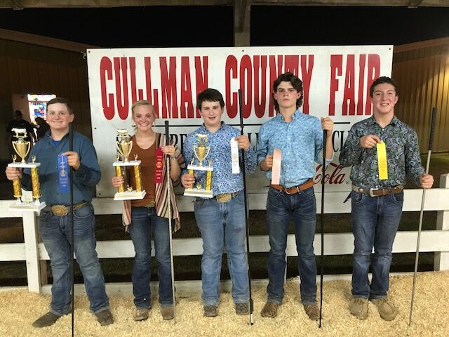 Junior Beef Show, 14-15 year old showmanship