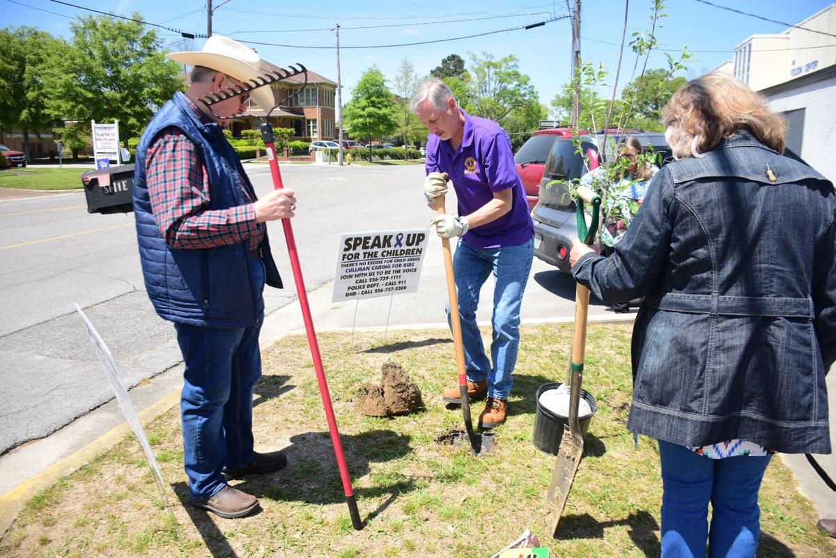 Caring for Kids Tree Planting