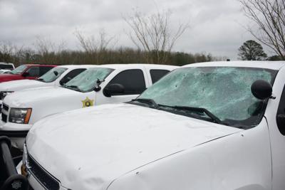 Sheriff's cars
