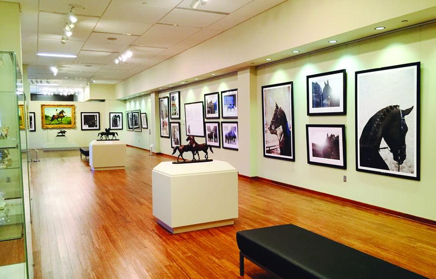 WSCC horse photography exhibition