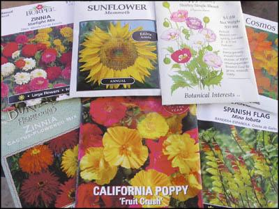 Seeds: What's in the packet