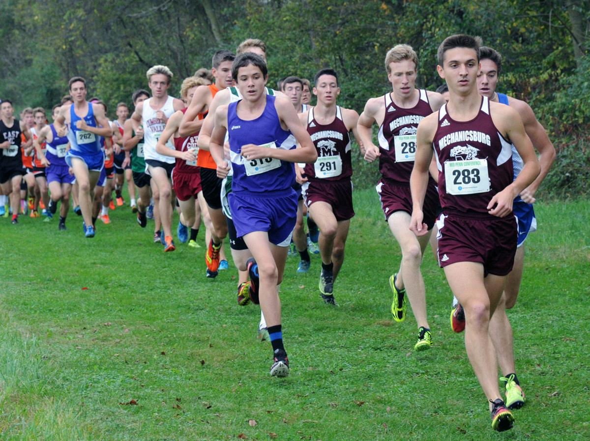 2017 Mid-Penn Cross Country Championships
