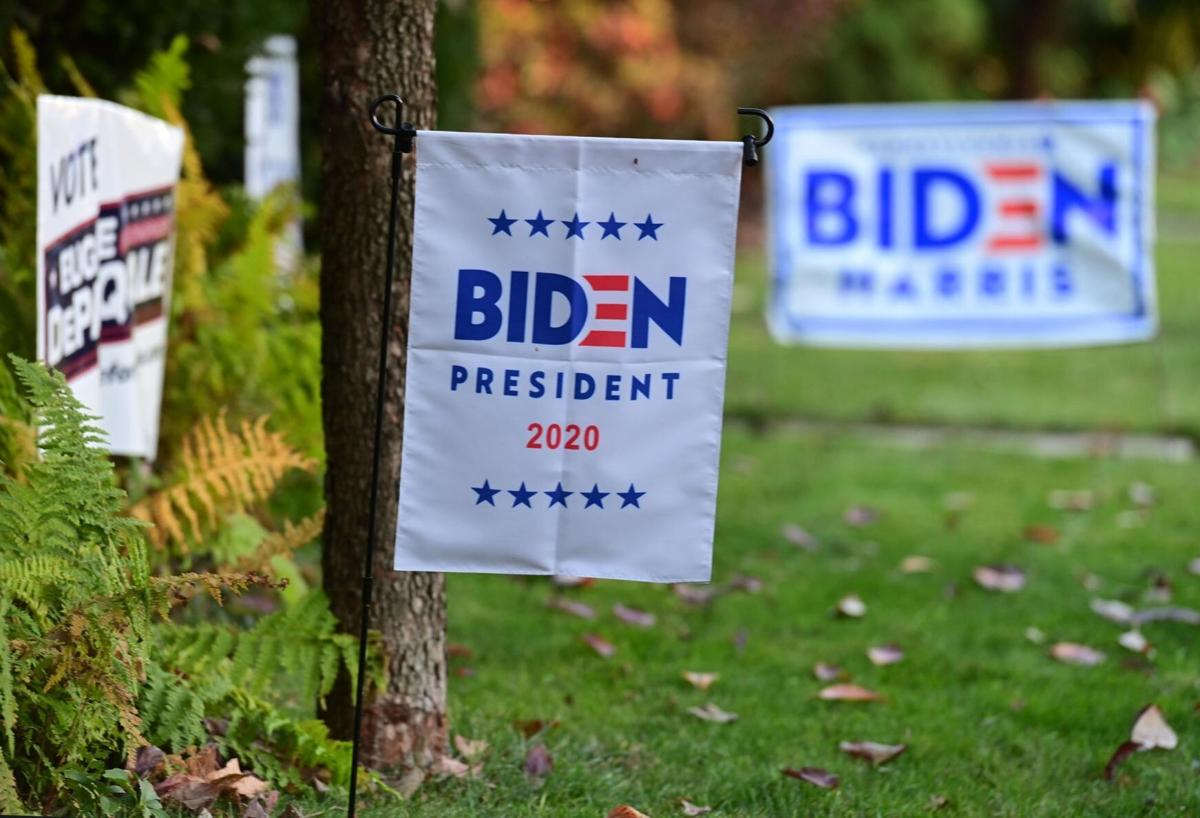 Political Signs 4