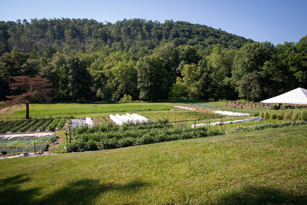LEAF Project Farm