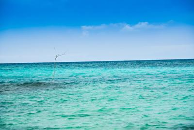 Earth Talk: If the world is running out of fresh water, why aren't we desalinating more ocean water?