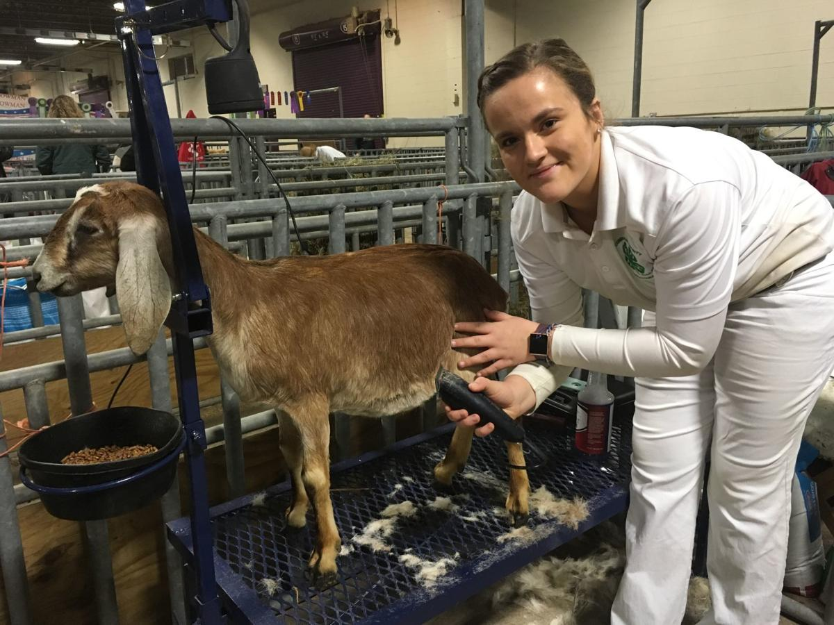 Abigail Beidel and goat