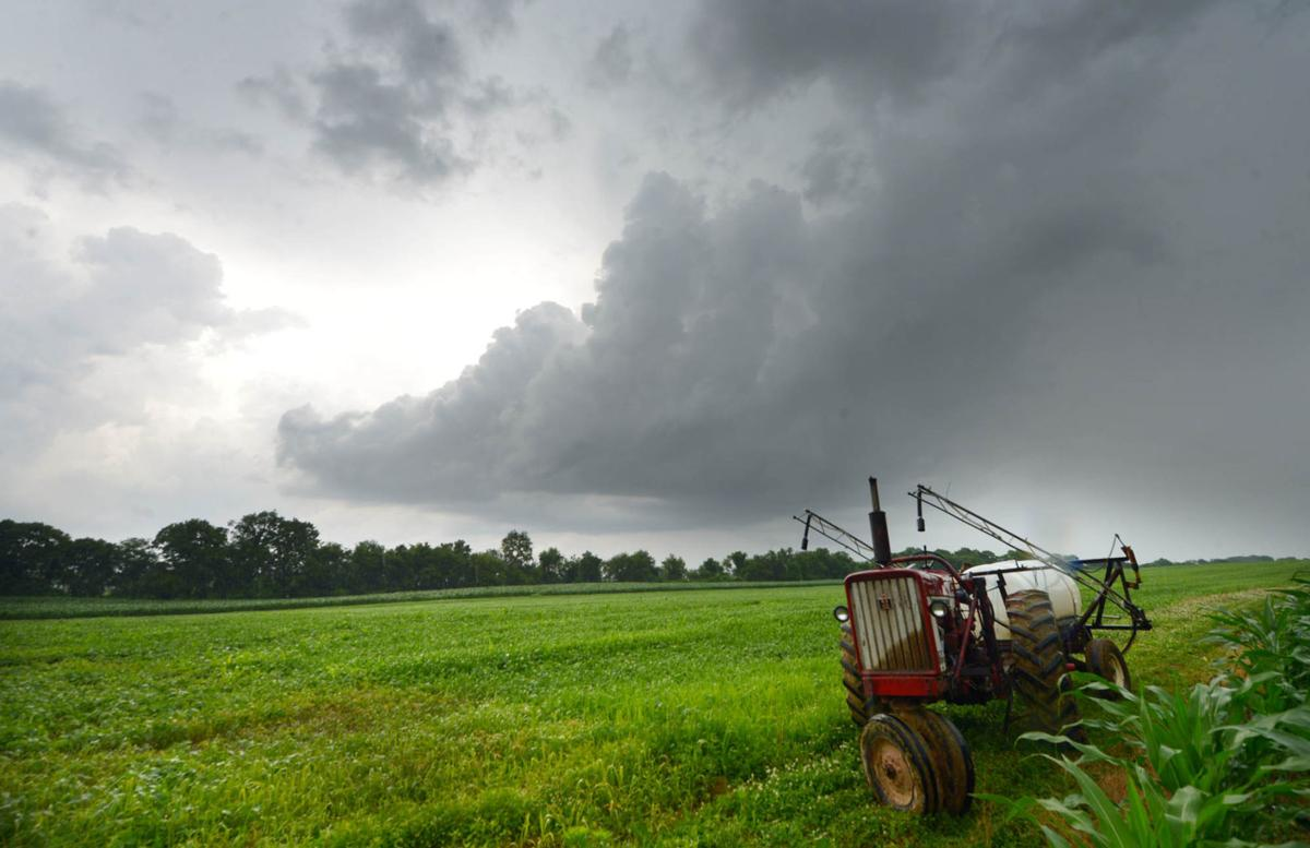 Carlisle farmland