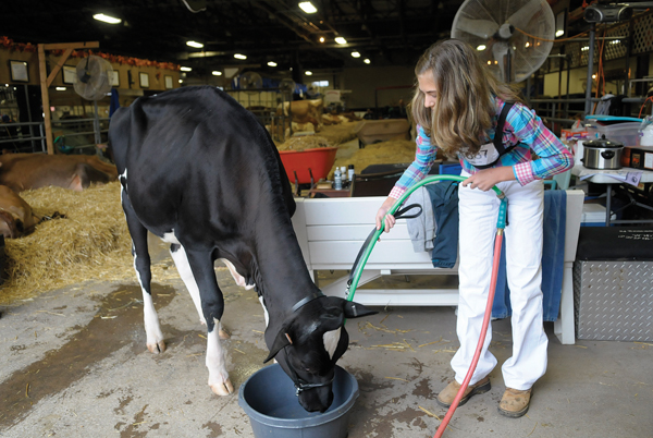 All American Dairy Show moves into Harrisburg | The Sentinel