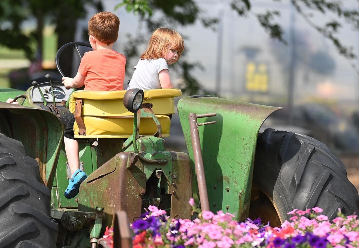 Hands-on farming activities at Paulus Farm Market 6