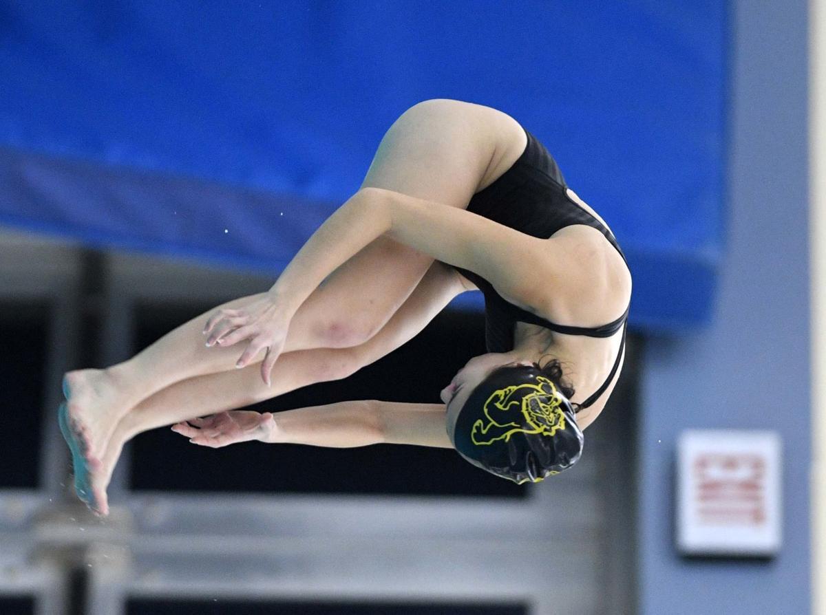 Mid-Penn Diving